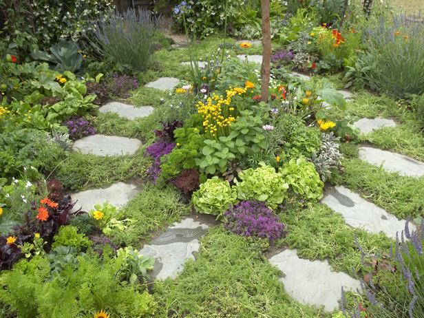Magical Herb Garden